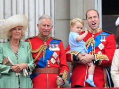 Charles and William have appointed two NHS spin doctors to oversee their communications (Jonathan Brady/PA).