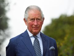 The Prince of Wales stressed the importance of protecting the arts during the pandemic (Victoria Jones/PA)