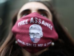 A protester wearing a 'Free Assange' mask (PA)