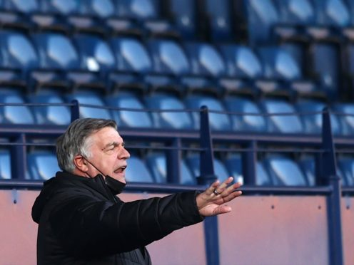 Sam Allardyce believes the fear factor can help West Brom survive the drop (Michael Steele/PA)