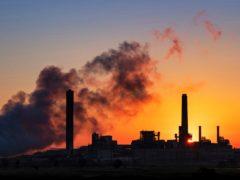 The group says that the main driver is coal demand (David Ake/AP)