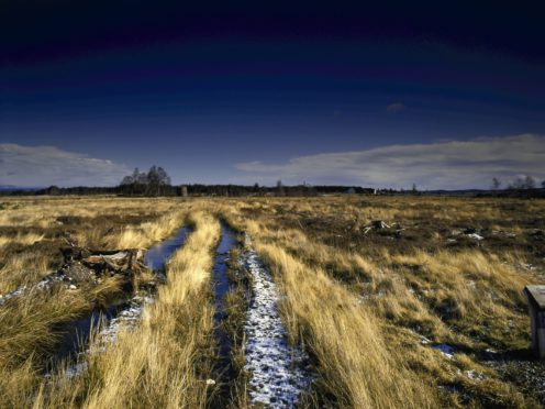 The battlefield viewed from Scottish lines (National Trust for Scotland/PA)