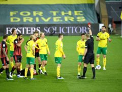 Norwich's Dimitris Giannoulis was sent off in defeat to Bournemouth (Joe Giddens/PA)