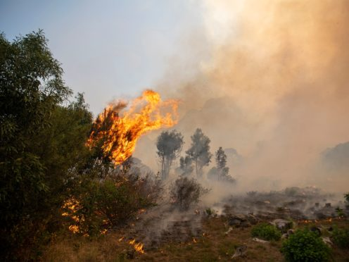 A fire rages out of control on the slopes of Table Mountain in Cape, South Africa (AP)