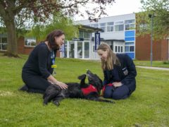 Rebecca Flory, clinical lead in the mental health support team for Gloucestershire Health and Care trust, with Year 10 pupil Lily and the school's therapy dog Molly at Bournside School in Cheltenham (Steve Parsons/PA)