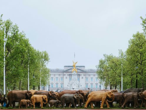 The CoExistence campaign on the Mall (Grant Walker/PA)