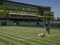 Wimbledon was cancelled in 2020 because of the coronavirus pandemic (Thomas Lovelock/AELTC)