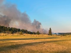 In this photo provided by Marshall Potts Music, the Sparks Lake wildfire burns in Kamloops, British Columbia, on Wednesday, June 30, 2021. (Courtesy of Marshall Potts Music via The Canadian Press via AP)