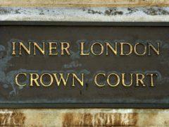 Mark Johann Insanally was sentenced at Inner London Crown Court (John Stillwell/PA)