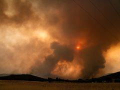A wildfire burns a forest in Vilia area some 60 kilometers (37 miles) northwest of Athens, Greece, Wednesday, Aug. 18, 2021. A major wildfire northwest of the Greek capital devoured large tracts of pine forest for a third day and threatened a large village as hundreds of firefighters, assisted by water-dropping planes and helicopters, battled the flames Wednesday. (AP Photo/Thanassis Stavrakis)