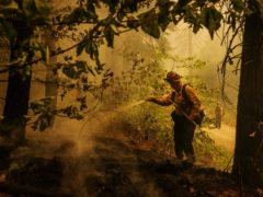 Firefighter Ryan Carpenter extinguishes flames in Hazel Valley Road, California (Ethan Swope/AP)