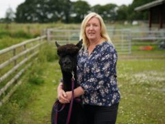 Owner Helen Macdonald has called for an urgent meeting with the Government as time runs out for Geronimo the alpaca to be culled (Andrew Matthews/PA)