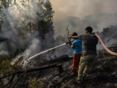 Villagers water trees to stop the wildfires that continue to rage in Antalya, Turkey (AP)
