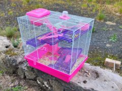 The cage was spotted by a motorist on Saturday night (Scottish SPCA/PA)