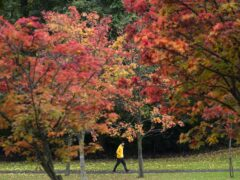 Autumn colour (Jane Barlow/PA)
