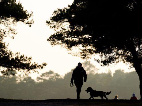 A dog walker in Barossa nature reserve in Camberley (John Walton/PA)