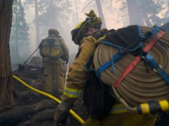 More than 14,600 firefighters were on the lines of 13 active, large wildfires in California. (AP Photo/Jae C. Hong)