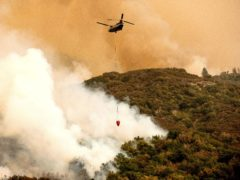 A helicopter battles the fire threatening the giant trees (Noah Berger/AP)