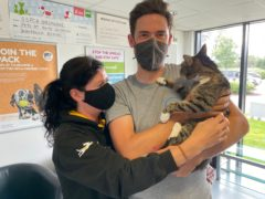 Forbes the cat is reunited with its owners after being reported missing 10 years ago (SSPCA)