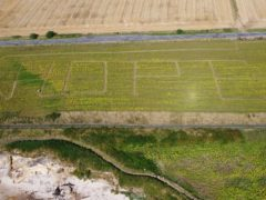 Claire Pollock of Ardross Farm in Fife carved the word 'hope' into her field (Church of Scotland/PA)