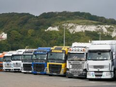 Lorries parked in Dover, Kent (Gareth Fuller/PA)