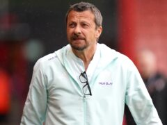 Sheffield United manager Slavisa Jokanovic saw his side beat Stoke 2-1 (Adam Davy/PA)