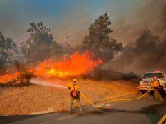 Firefighters tackle a blaze in California (Mike Eliason/Santa Barbara County Fire Department via AP)
