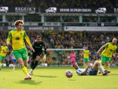 Norwich City's Josh Sargent missed a good chance during the 0-0 draw with Brighton (Joe Giddens/PA)