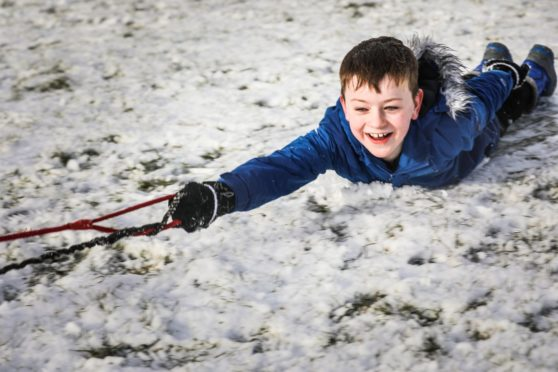 Max Allan, 8, is pulled along on his sledge by his dogs Chewie and Scooby in Camperdown Park on Saturday, January 30 2021.