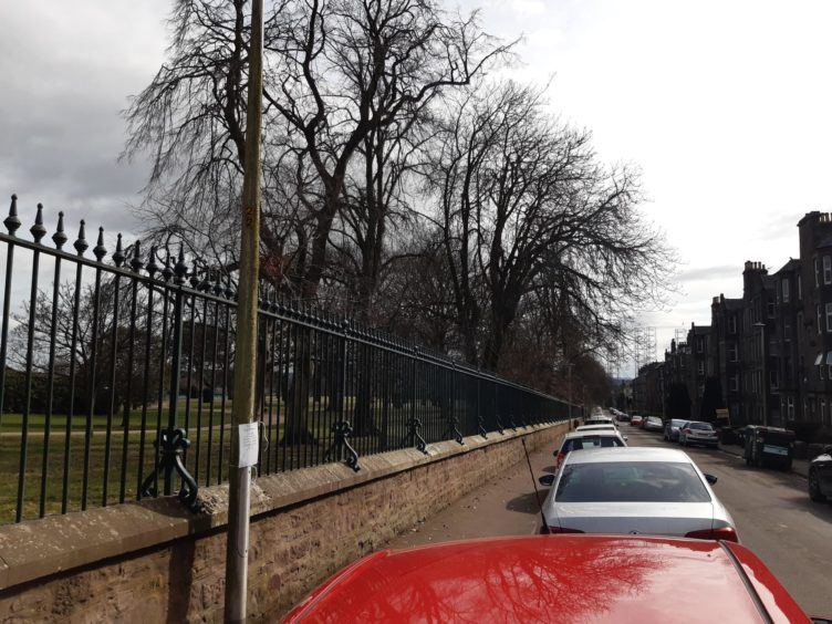 The parking restrictions in Baxter Park Terrace in Dundee may not go ahead.