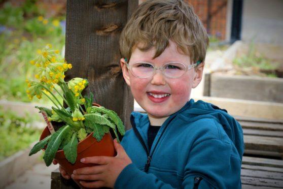 Little boy holding a plant pot