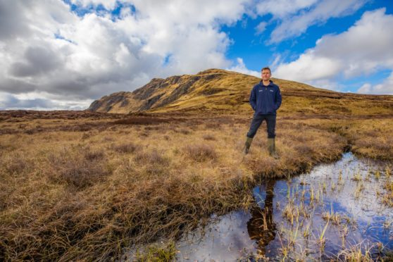 peatland carbon emissions