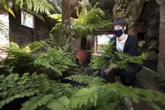 Cicely Farrer, programme and communications manager at Hospitalfield in the newly restored fernery at Hospitalfield.