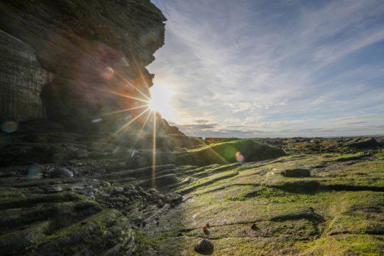 Arbroath Cliffs, Angus.