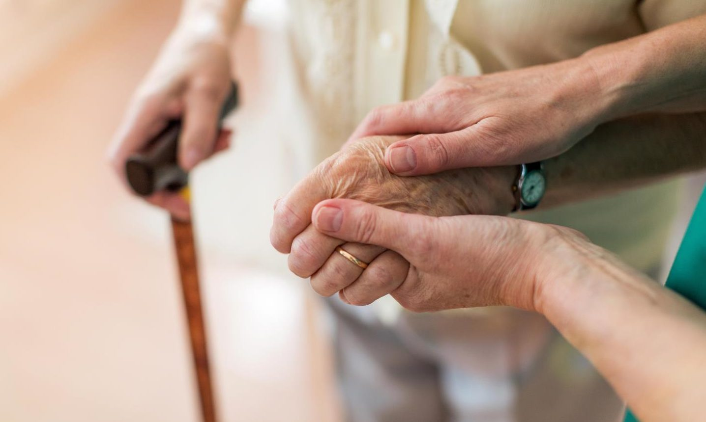 Almost one third of referrals to the adult protection committee (APC) involved over-65s.