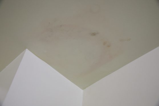 The mould on Ms Sutherland's ceiling at her home in Lathro Meadows.