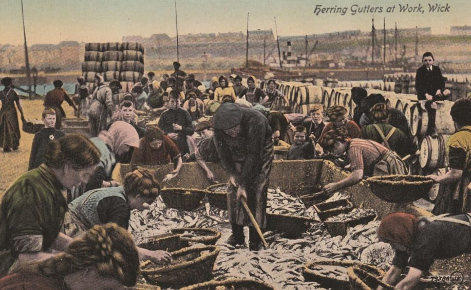 An old picture of herring gutters at work.
