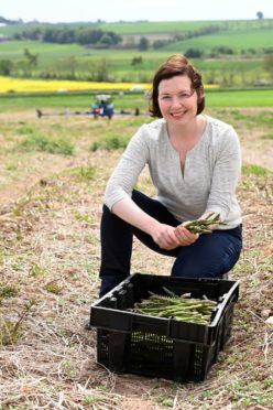 A woman kneeling over a box of freshly-picked asparagus
