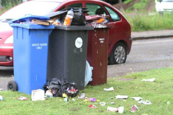 Dundee recycling bin
