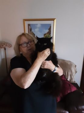 Linda with cat Star who was found in Carnoustie