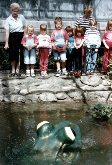 McPuddock, the amphibian formerly known as Mr Puddock, has long been popular with visitors to the Winter Gardens. Children paid him a visit in 1992, three years after he was gifted to the gardens by the North-east of Scotland Federation of Townswomen's Guild.