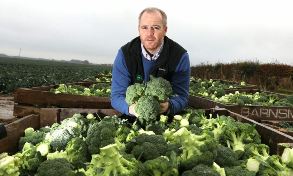 ESG managing director Andrew Faichney.