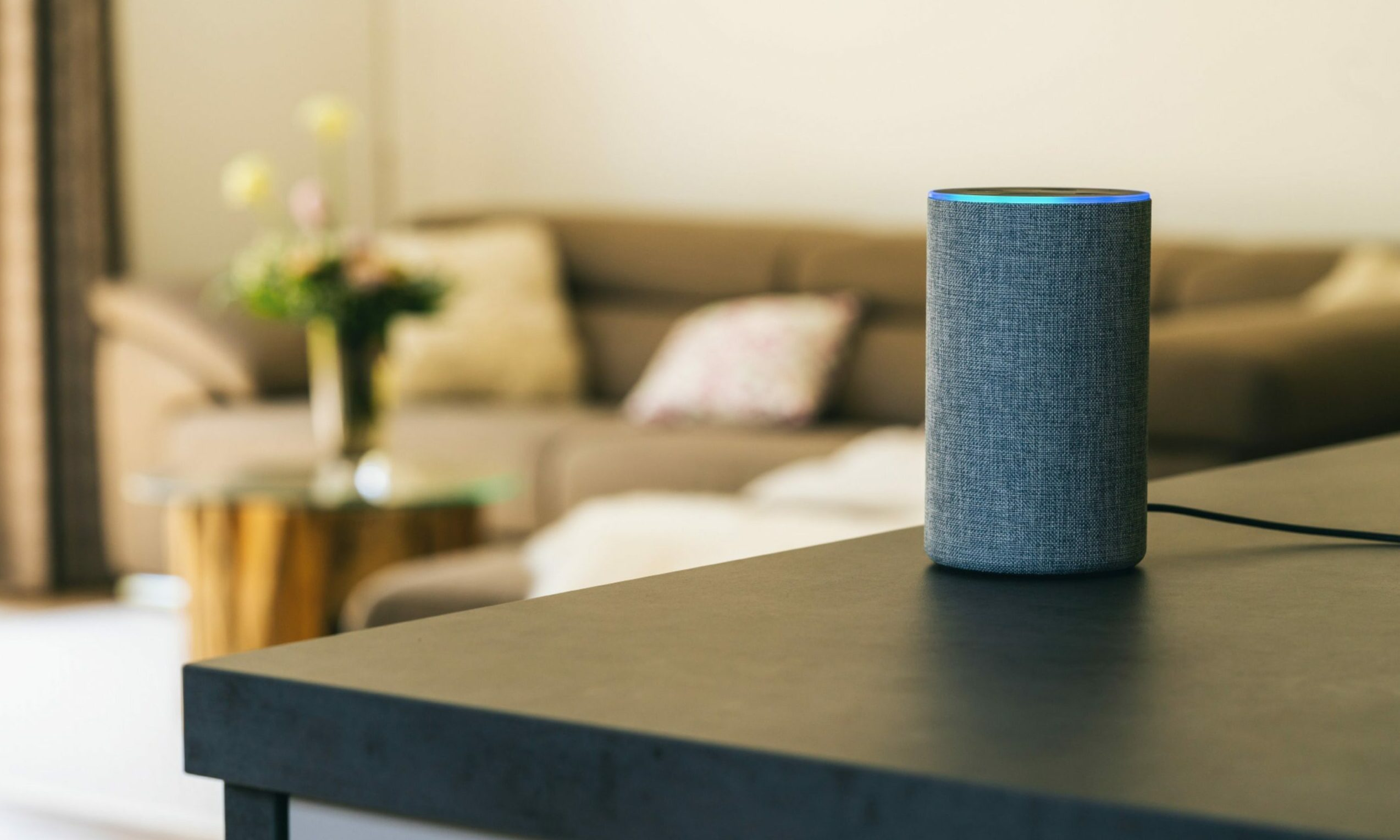 Colin says investing in a smart speaker, such as Amazon's Echo range, can help complete tasks for people with sight loss.