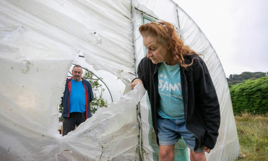 Vandals have now damaged a thousand pound poly tunnel tent.