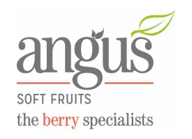 Featured Image for Angus Soft Fruits