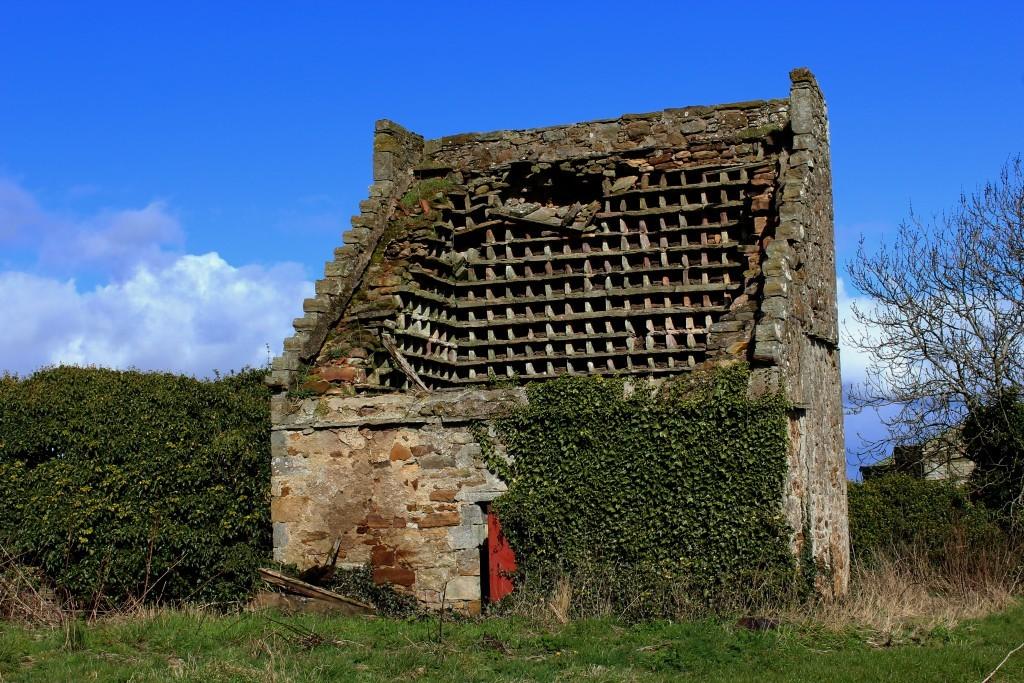 1. Dovecot at Boarhills - James Carron.jpg