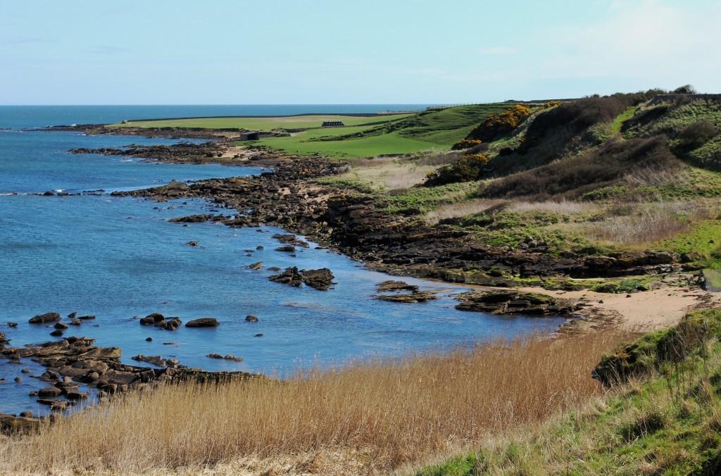4. Coastline below Boarhills - James Carron.jpg