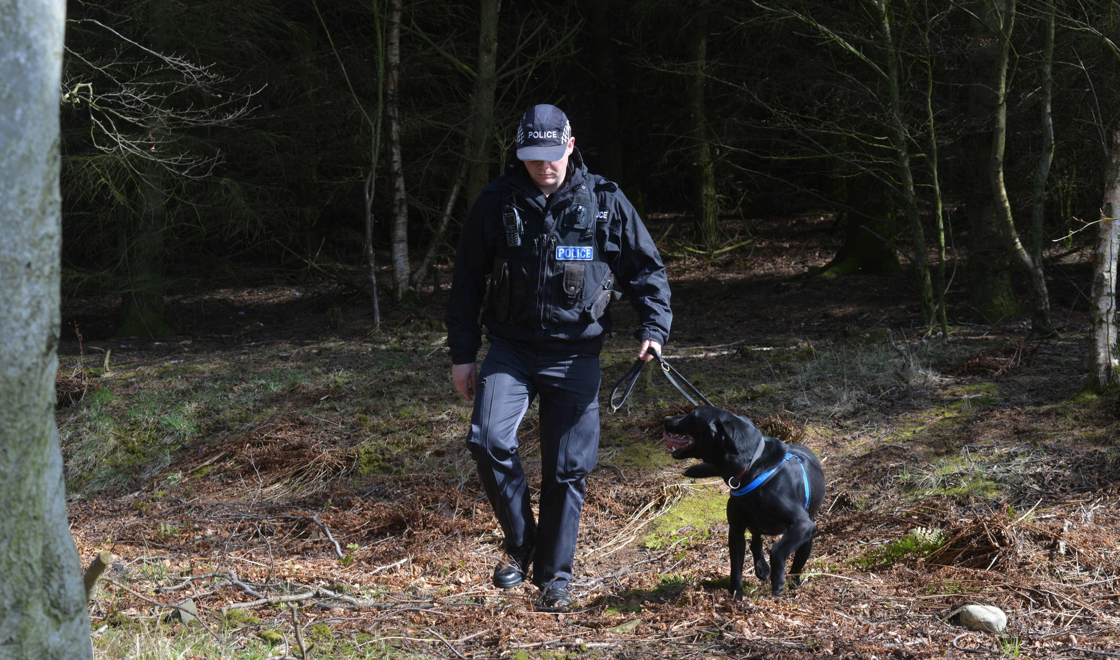 Police combing woodland at Scotlands Secret Bunker near Anstruther in Fife following up a new lead in the search for Allan Bryant Jnr.