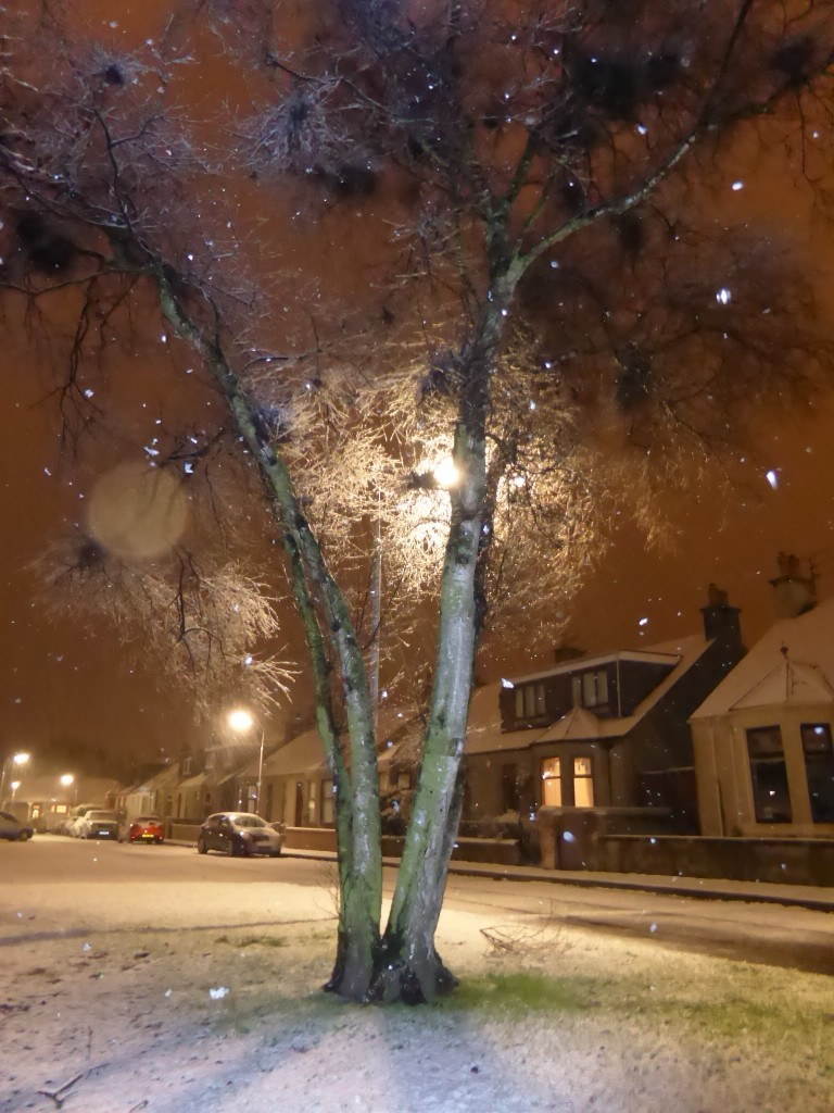 """Lesley Gardiner captured the snowy scene in Leven. """"First snow of summer!"""" she joked."""