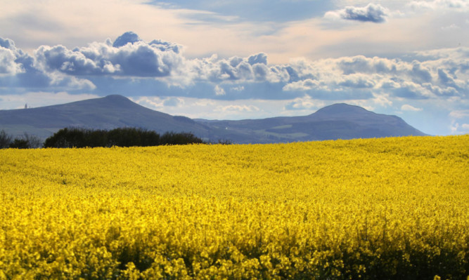 The Lomond Hills will get a £1.71m funding boost.